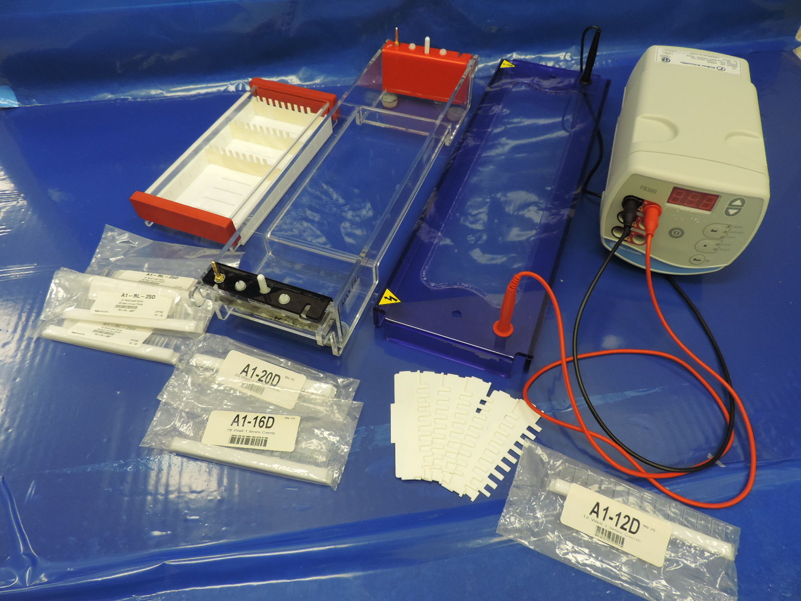 Cleaver Electrophoresis System with Fisher Scientific